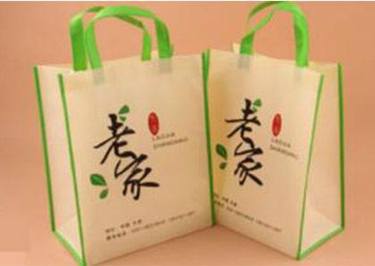 environment-bag